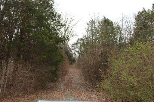 1 Cane Ridge Rd, Antioch, TN 37013 (MLS #RTC2089174) :: Nashville on the Move