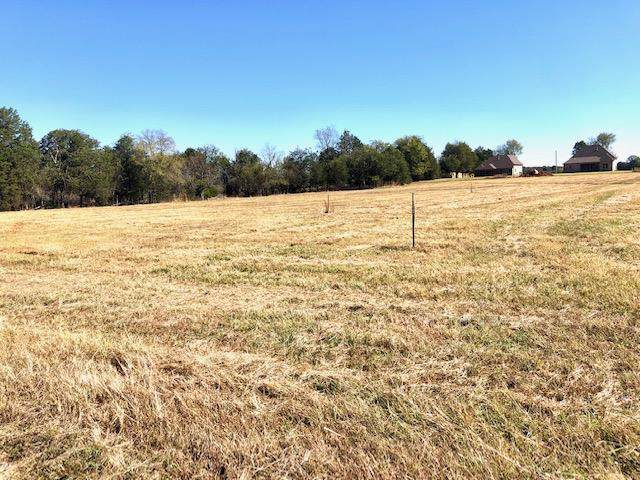 40 Flat Woods Road, Lebanon, TN 37090 (MLS #RTC2090226) :: REMAX Elite
