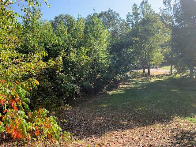 0 Kirks Trading Post, Buchanan, TN 38222 (MLS #RTC2090460) :: CityLiving Group