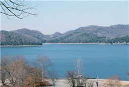 0 Falling Water Rd, Smithville, TN 37166 (MLS #RTC2090504) :: Oak Street Group
