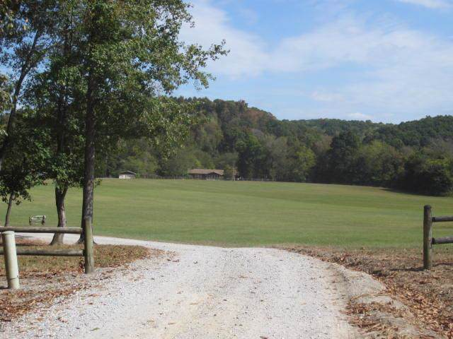 428 Gwin Cemetery Rd, Waverly, TN 37185 (MLS #RTC2091917) :: CityLiving Group