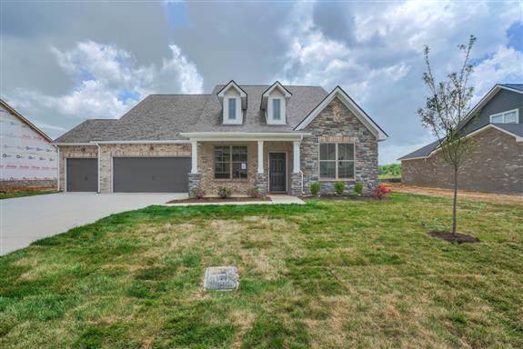 2417 Bullrush Lane (Lot 85), Murfreesboro, TN 37128 (MLS #RTC2092433) :: Fridrich & Clark Realty, LLC