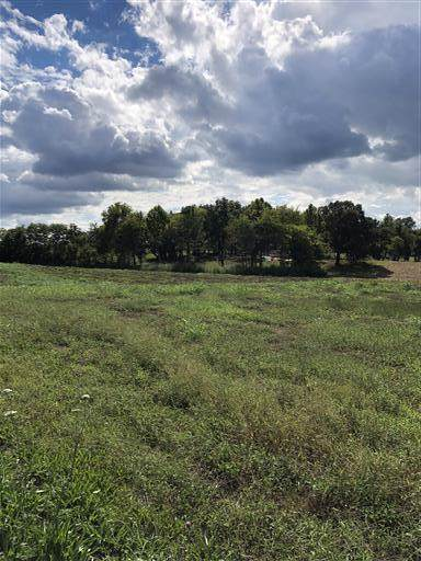 5034 Rippy Road, Cross Plains, TN 37049 (MLS #RTC2100009) :: Village Real Estate