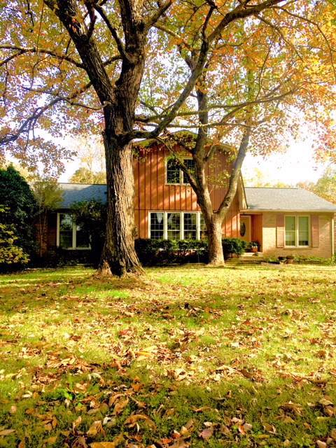 39 Orchard Hill Rd, Fayetteville, TN 37334 (MLS #RTC2100255) :: Nashville on the Move