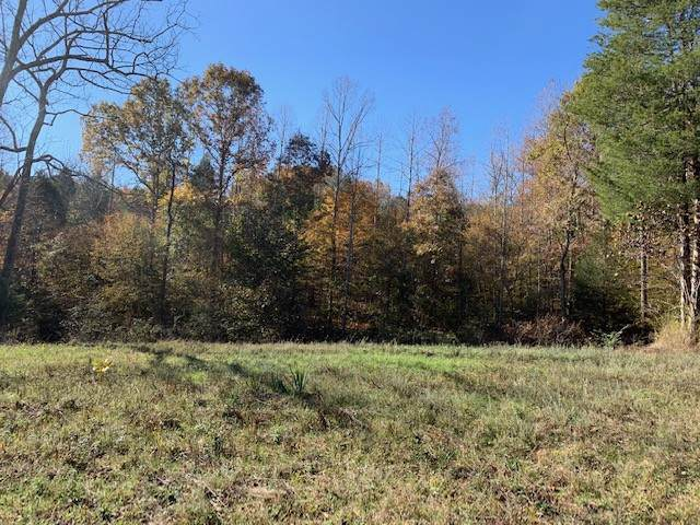 0 Gordon Ln, Primm Springs, TN 38476 (MLS #RTC2101092) :: REMAX Elite