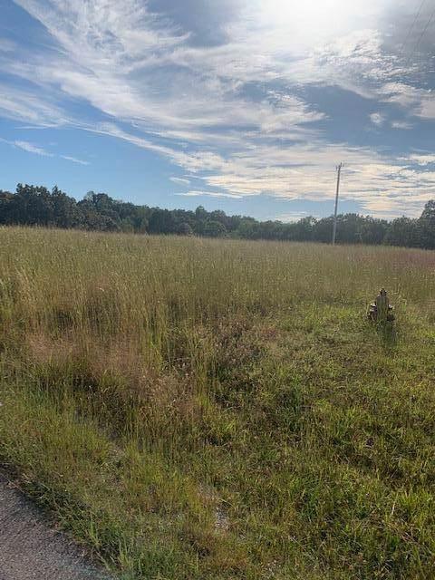 0 Loren Ln, Centerville, TN 37033 (MLS #RTC2101301) :: Village Real Estate