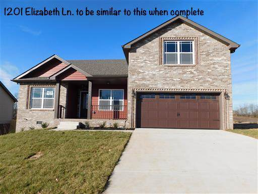 1201 Elizabeth Lane, Clarksville, TN 37042 (MLS #RTC2101910) :: Village Real Estate