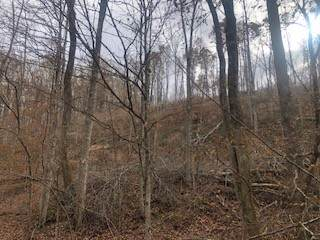 0 Wallace Rd, Gallatin, TN 37066 (MLS #RTC2102192) :: Ashley Claire Real Estate - Benchmark Realty