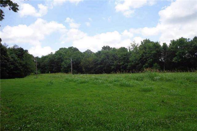 0 Hwy 13, Hurricane Mills, TN 37078 (MLS #RTC2102998) :: Felts Partners