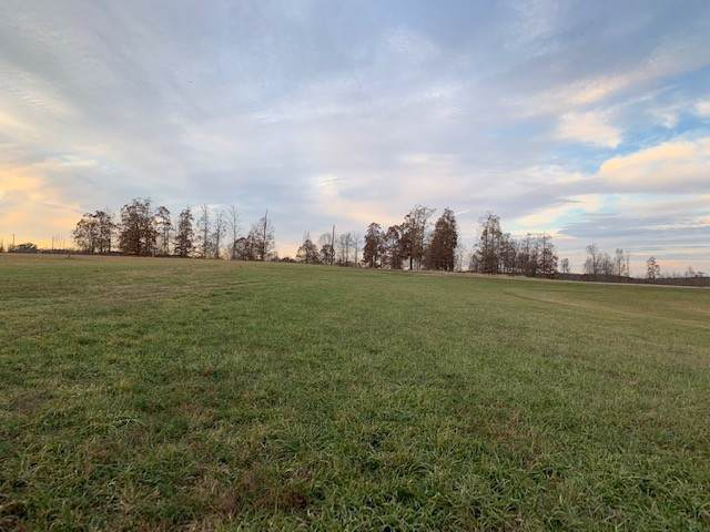 3 W Lick Creek Rd, Primm Springs, TN 38476 (MLS #RTC2103432) :: Christian Black Team