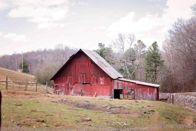 4980 Stiversville Rd, Culleoka, TN 38451 (MLS #RTC2105971) :: Nashville on the Move