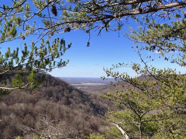 159 Little Trees Ramble, Monteagle, TN 37356 (MLS #RTC2106033) :: RE/MAX Homes And Estates