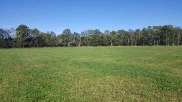 2220 Hunter Bills Rd, Lewisburg, TN 37091 (MLS #RTC2111137) :: Katie Morrell | Compass RE