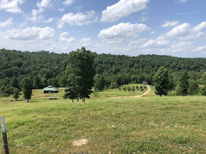 1233 Mccord Hollow Rd. Tract #5 - Photo 1