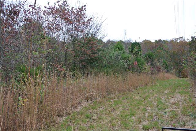 444 Knox Pearson Rd, Manchester, TN 37355 (MLS #RTC2112541) :: Village Real Estate
