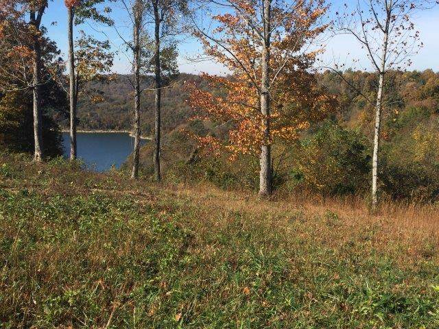 0 Silver View Ln.,, Silver Point, TN 38582 (MLS #RTC2113418) :: CityLiving Group
