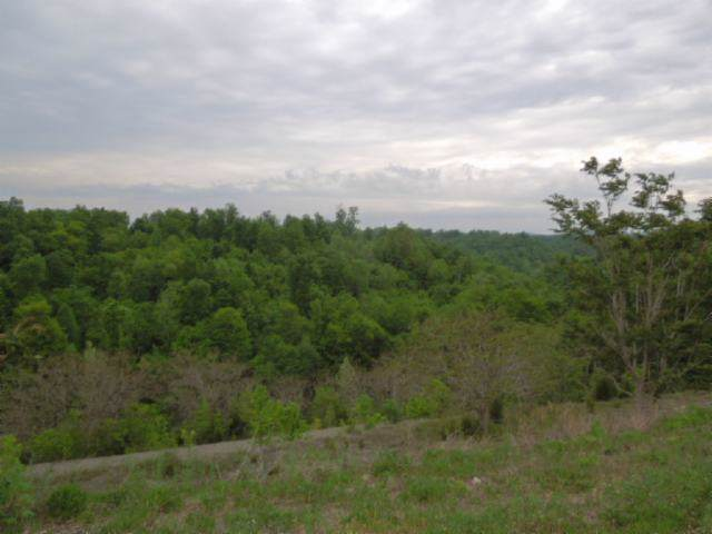 156 .13 Ac. Clay County Hwy - Photo 1