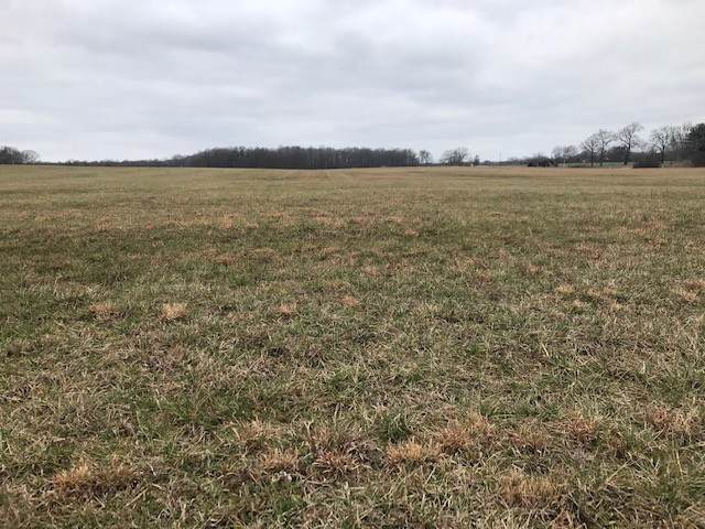 0 State Route 287 Lot 2 N, Morrison, TN 37357 (MLS #RTC2117698) :: FYKES Realty Group