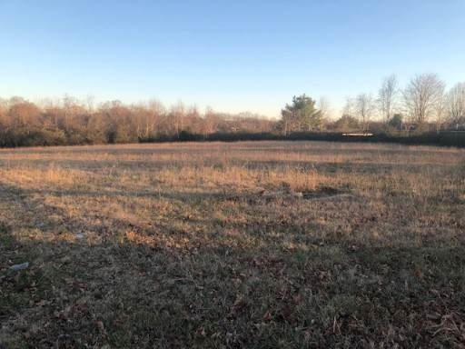0 Burt East Dr, Columbia, TN 38401 (MLS #RTC2118324) :: Ashley Claire Real Estate - Benchmark Realty