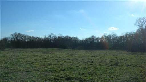 6 Blair Pond Rd, Winchester, TN 37398 (MLS #RTC2121674) :: Village Real Estate