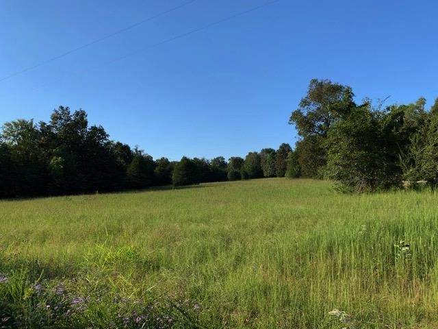0 Jess Neal Rd, Spring Hill, TN 37174 (MLS #RTC2122348) :: The Kelton Group