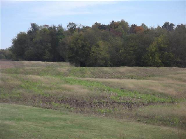 0 Highway 161, Springfield, TN 37172 (MLS #RTC2123099) :: Maples Realty and Auction Co.