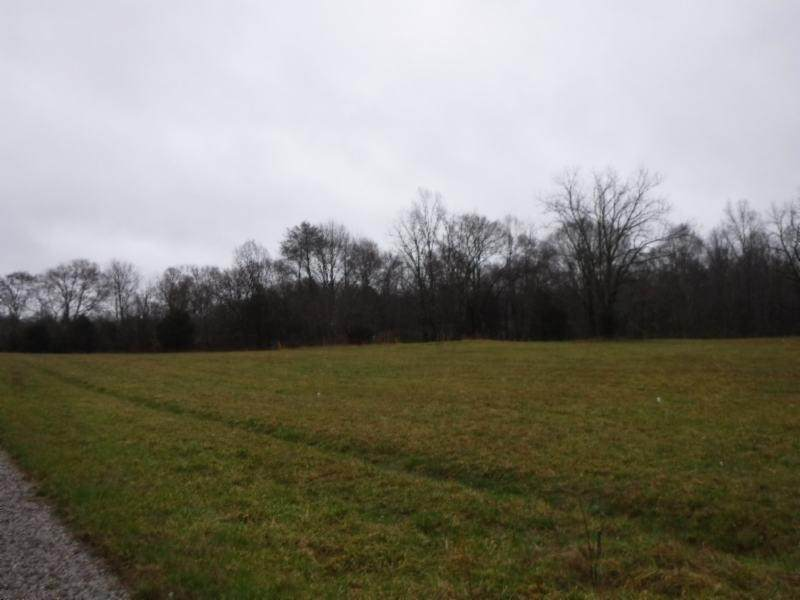 40 .47Ac Arrowhead Road - Photo 1