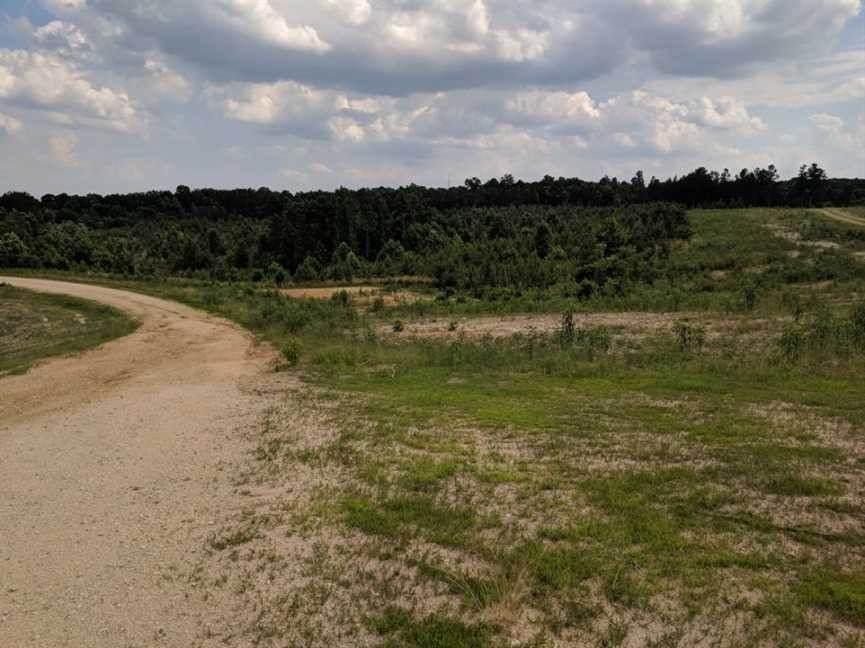 0 Leatherwood Road - Photo 1