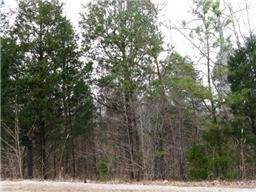 0 White Bluff Rd, White Bluff, TN 37187 (MLS #RTC2138169) :: John Jones Real Estate LLC