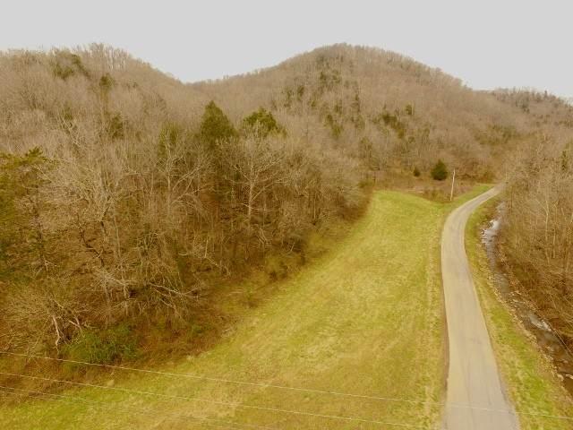 532 Ac. Wet Mill Creek Rd - Photo 1