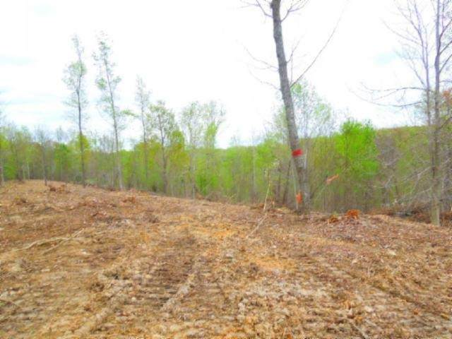 15 .86Ac Pleasant Cemetery Rd, Gainesboro, TN 38562 (MLS #RTC2144102) :: Armstrong Real Estate