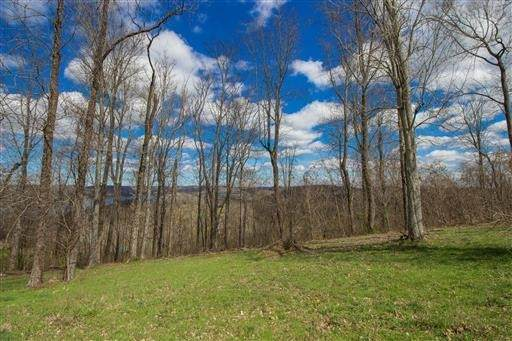 88 Davidson Rd, Smithville, TN 37166 (MLS #RTC2149852) :: The Adams Group