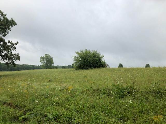 0 Cherry Glen Ct Lot 22, Leoma, TN 38468 (MLS #RTC2151726) :: PARKS
