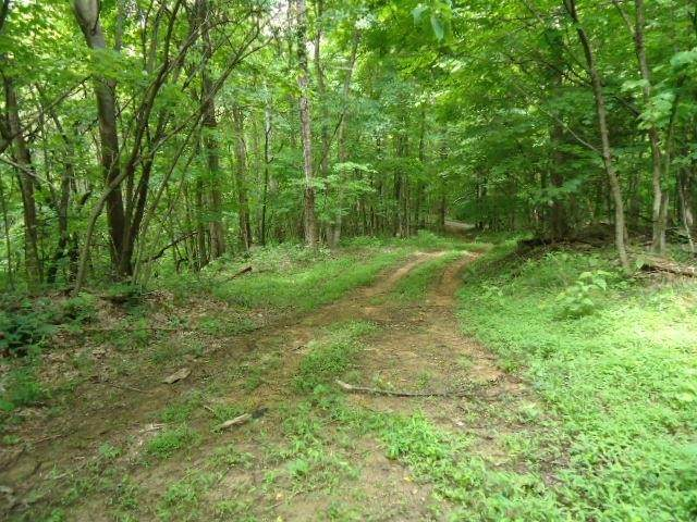 5 .52 Ac.Star Point Road, Celina, TN 38551 (MLS #RTC2154112) :: Team Wilson Real Estate Partners