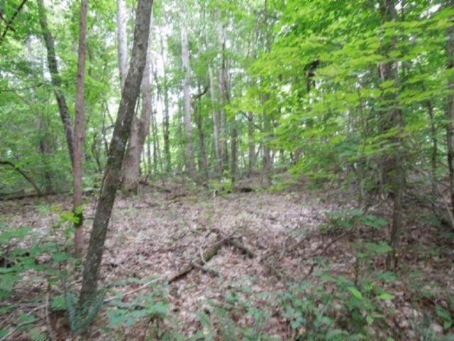 5 .95 Ac.Star Point Road, Celina, TN 38551 (MLS #RTC2154119) :: Team Wilson Real Estate Partners