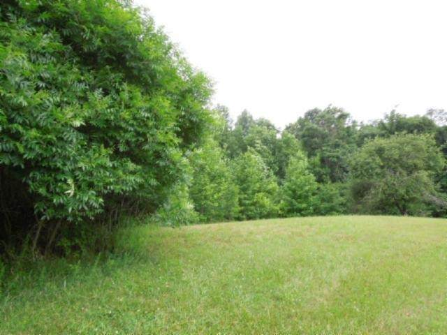 9 .05 Ac.Star Point Road, Celina, TN 38551 (MLS #RTC2154128) :: Team Wilson Real Estate Partners