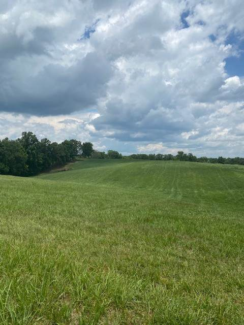 0 Clax Branch Rd, Loretto, TN 38469 (MLS #RTC2162170) :: Village Real Estate