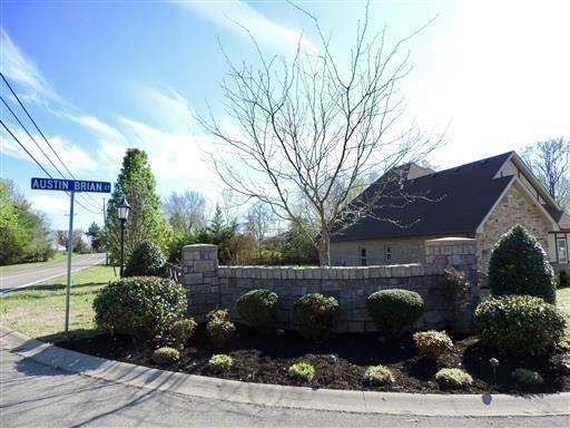 3156 Austin Brian Ct., Clarksville, TN 37043 (MLS #RTC2165032) :: CityLiving Group