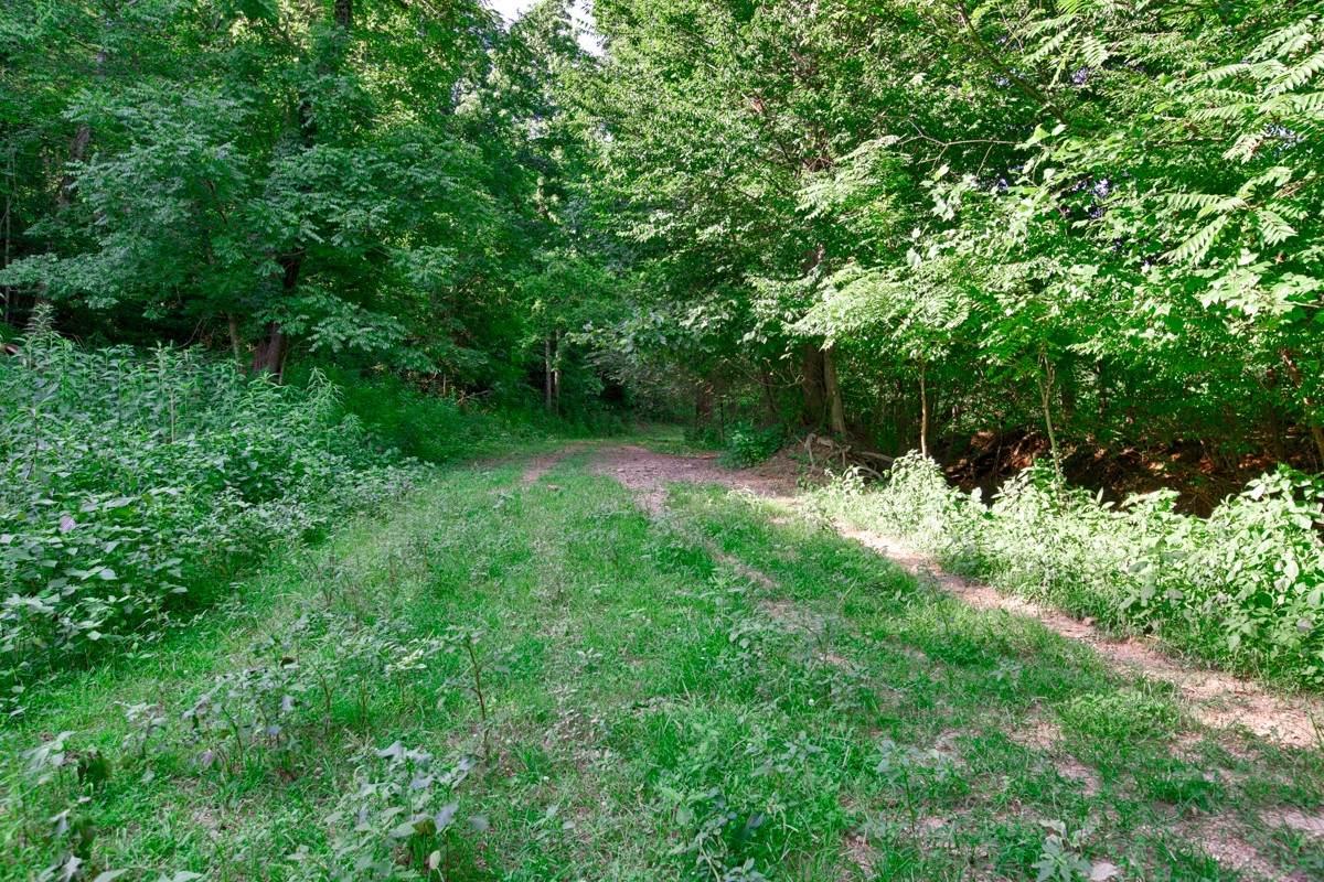 0 Shoal Creek Rd. - Photo 1