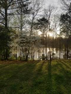 0 Cypress Point Dr. Lot 9, Winchester, TN 37398 (MLS #RTC2173525) :: Village Real Estate