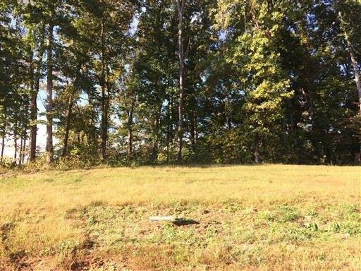 4403 Memory Ln, Adams, TN 37010 (MLS #RTC2179527) :: The Milam Group at Fridrich & Clark Realty