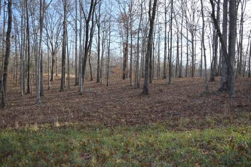 5800 Poplar Grove  Lot 10, Mc Ewen, TN 37101 (MLS #RTC2181130) :: Village Real Estate