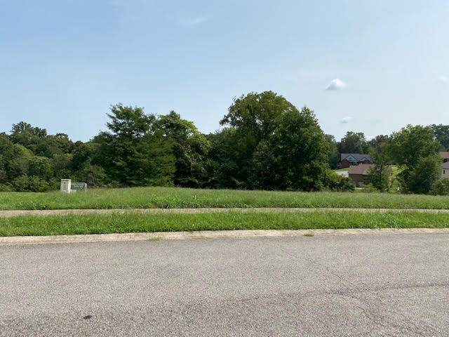 16 Plantation Dr, Pleasant View, TN 37146 (MLS #RTC2189391) :: The Kelton Group