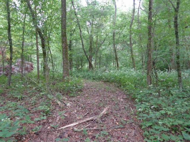 0 George Reagor Rd, Shelbyville, TN 37160 (MLS #RTC2190121) :: Maples Realty and Auction Co.