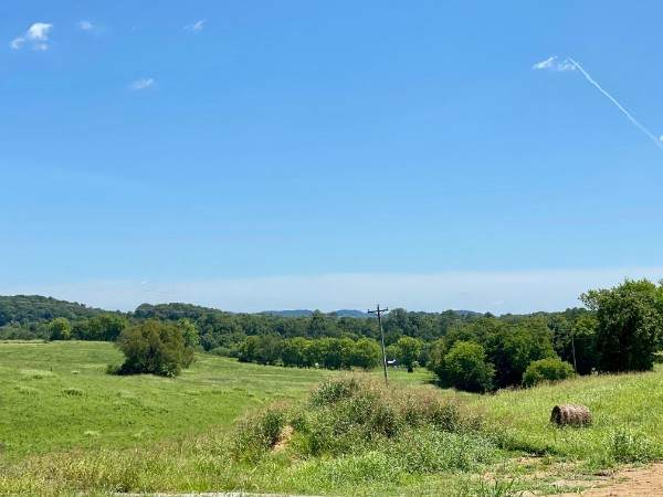 1200 Hearn Hill Rd, Watertown, TN 37184 (MLS #RTC2191933) :: Village Real Estate