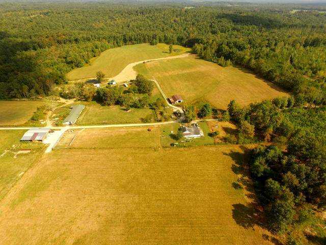 306 Ernie Hurst Road, Deer Lodge, TN 37726 (MLS #RTC2194010) :: Village Real Estate