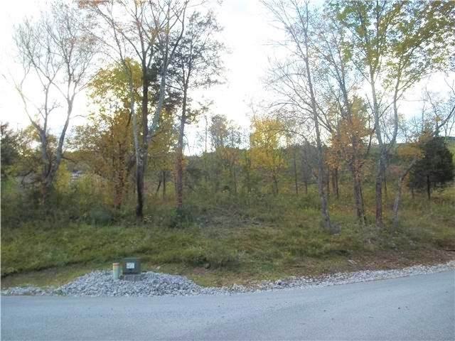 17 Bella Grace Dr, Smithville, TN 37166 (MLS #RTC2198526) :: Fridrich & Clark Realty, LLC