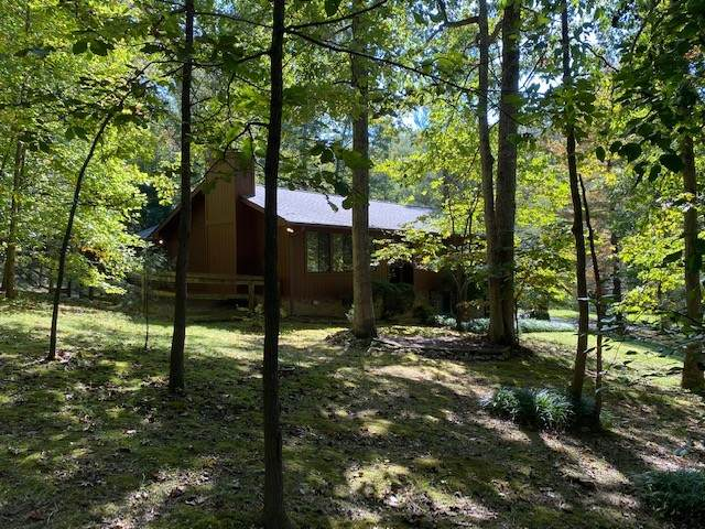 1010 Pine Valley Rd, Kingston Springs, TN 37082 (MLS #RTC2199447) :: Nashville on the Move