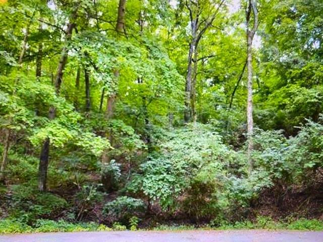 6680 Jocelyn Hollow Rd, Nashville, TN 37205 (MLS #RTC2199696) :: John Jones Real Estate LLC