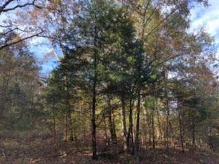14 Dogtail Rd, Shelbyville, TN 37160 (MLS #RTC2201484) :: EXIT Realty Bob Lamb & Associates